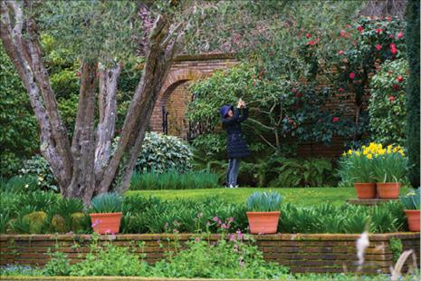 Woodside\'s Filoli Garden in Bloom   Bay Area Real Estate News